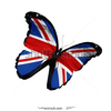 Stock photo english flag butterfly flying isolated on white background 107750813